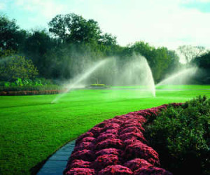 Prince George's MD commercial landscaping